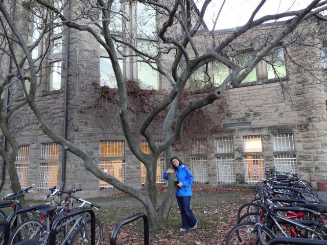 Oh Cornell, I missed you! (Ithacans may recognize this as that lovely cherry tree in front of Uris library)