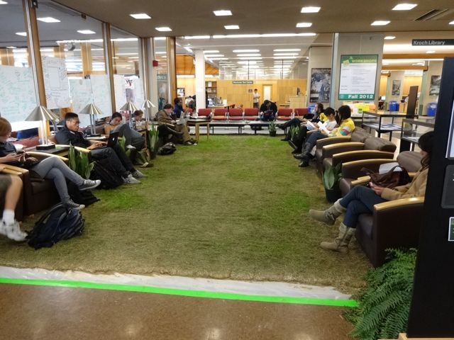 They installed LIVE GRASS in Olin Library!